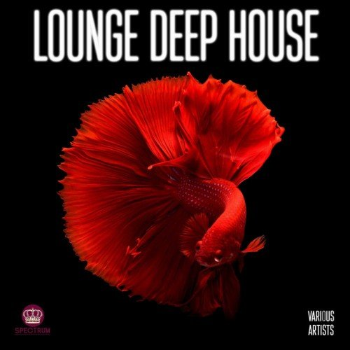 VA - Lounge Deep House (2017)