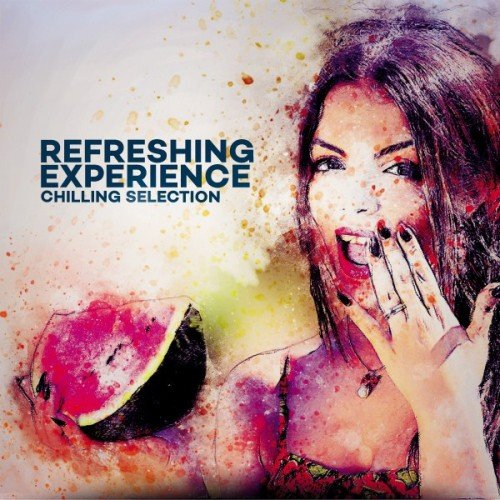 VA - Refreshing Experience Chilling Selection (2017)