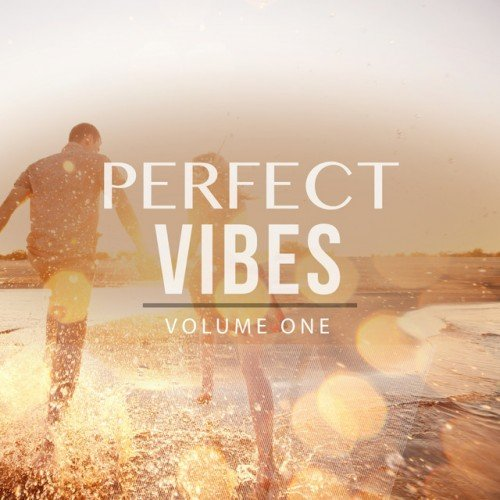 VA - Perfect Vibes Vol.1: Selection Of Finest Deep House and House Music (2017)
