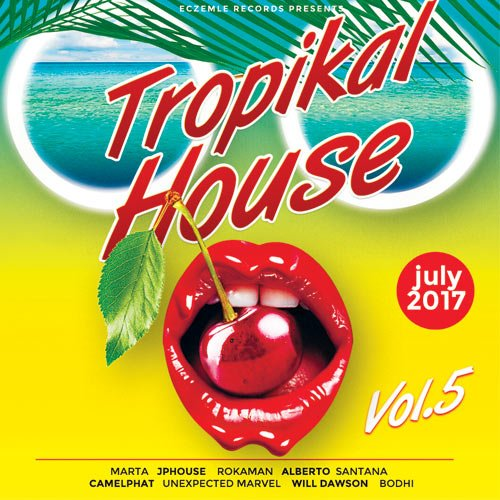 VA-Tropical House Vol.5 (2017)