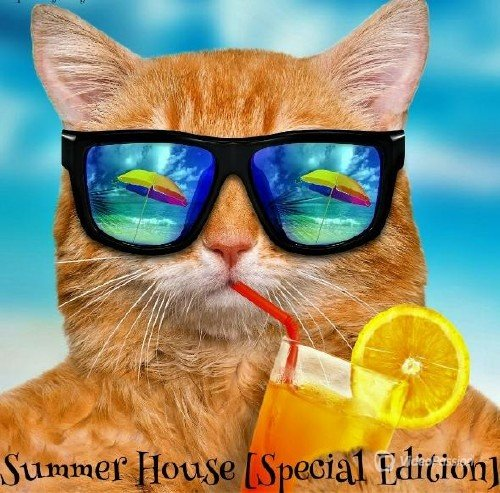 Summer House: Special Edition (2017)
