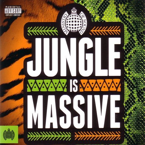 VA-Ministry Of Sound - Jungle Is Massive (2017)