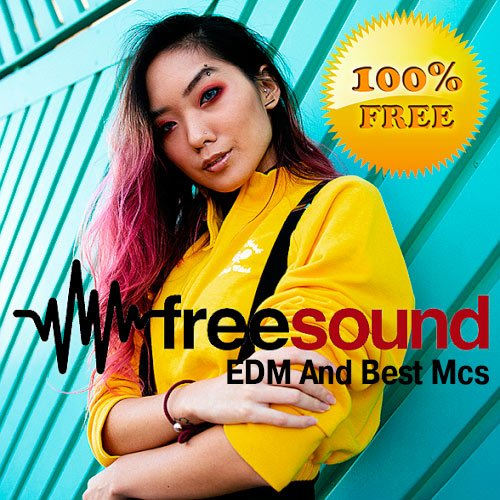VA-Free Sound EDM And Best Mcs (2019)
