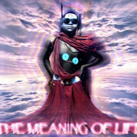 VA-The Meaning Of Life