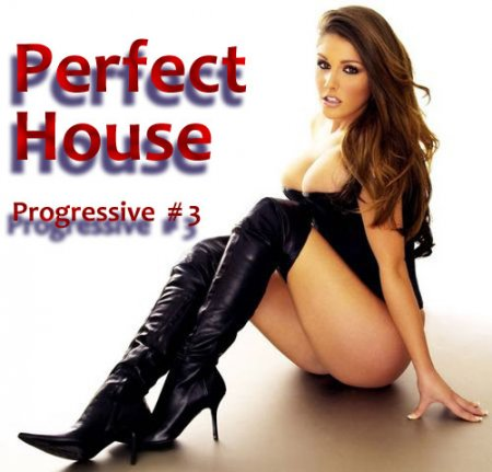 VA-Perfect House - Progressive House # 3