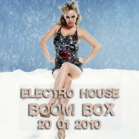 VA-Electro-House Boom BOX (20.01.2010)