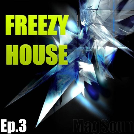 VA-Freezy House ep.3(2010)