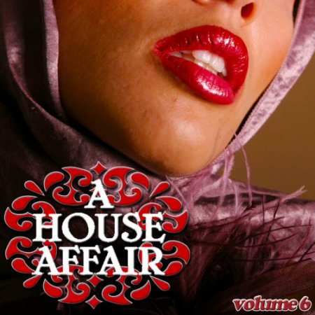VA-A House Affair Vol 6 (2010)