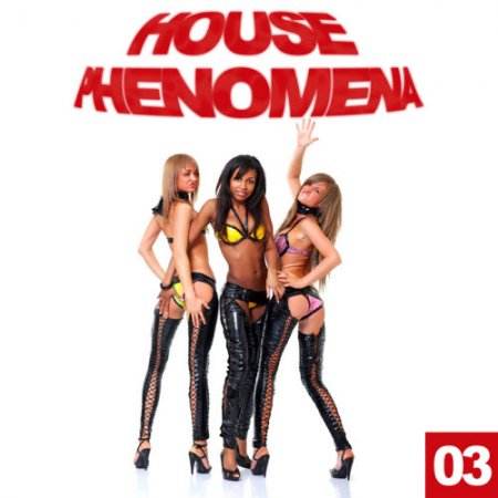 VA-House Phenomena Vol 3 (2010)