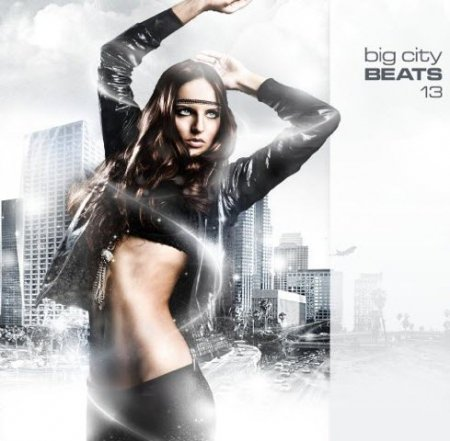 VA-Big City Beats Vol.13 (2010)