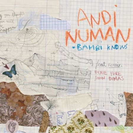 Andi Numan - Bambi Knows (2010)