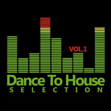 VA-Dance To House Selection Vol 1 (2010)
