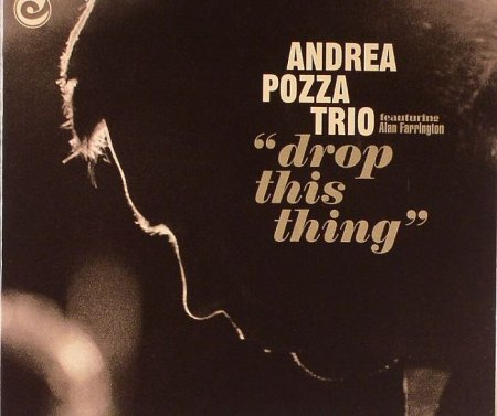 Andrea Pozza Trio - Drop This Thing (2008)
