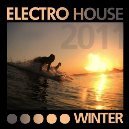 VA-Electro House Winter (2011)