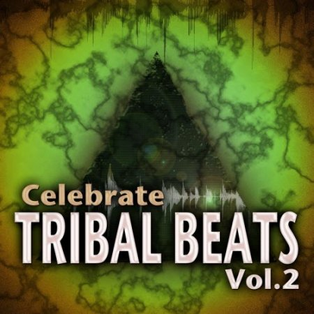 VA-Celebrate Tribal Beats, Volume 2  (2011)