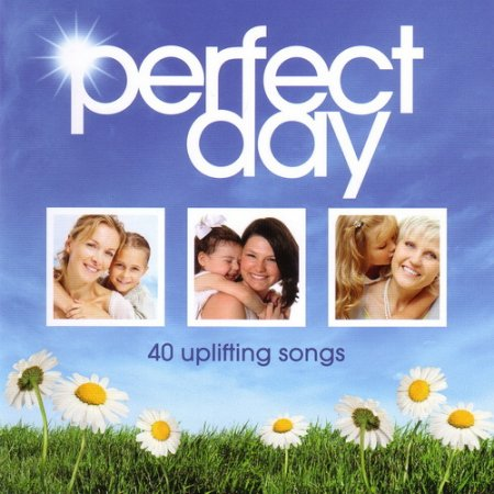 VA - Perfect Day (2011)