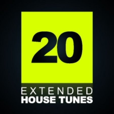 VA - 20 Extended House Tunes (2011)