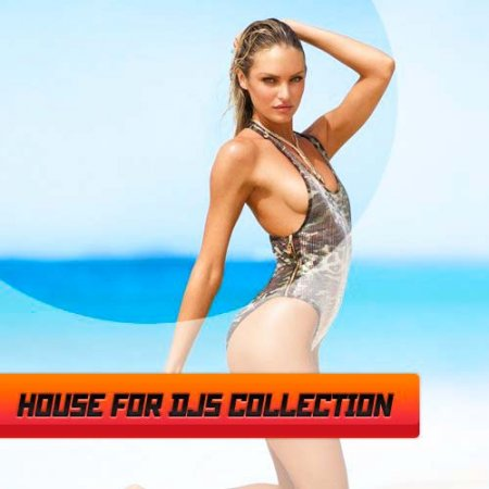 VA-House for djs collection vol.3 (2012)