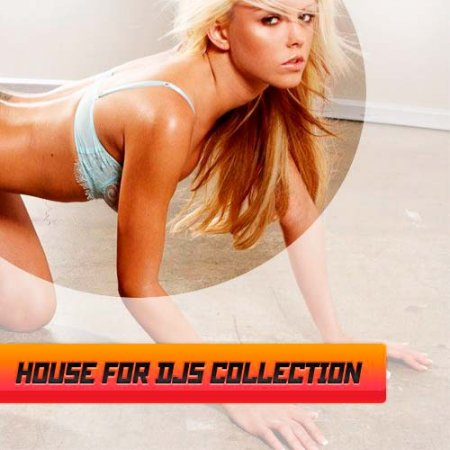 VA-House for djs collection vol.4 (2012)