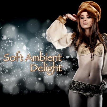 VA-Soft Ambient Delight (2012)