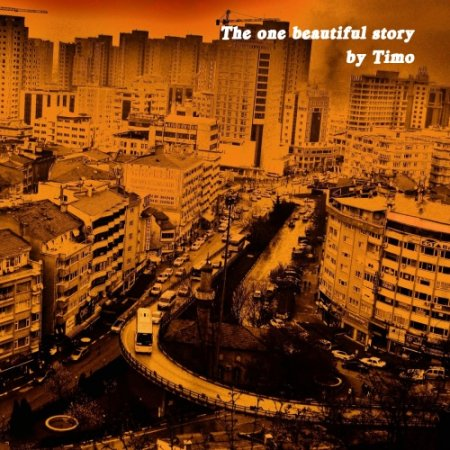 The One Beautiful Story by Timo (2011)