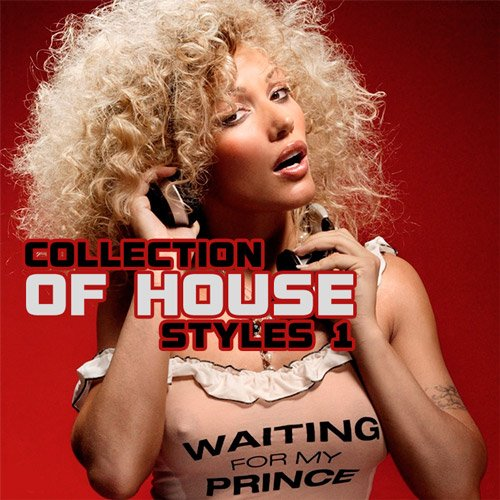 VA-Collection Of House Styles 1 (2020)